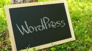 【WordPress】PC初心者でも出来る。mixhostでブログの始め方。実際にやってみたら以外に難しくなかった!その①