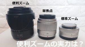 【望遠レンズ】便利ズームってどう?メリットとデメリット、H-FS14140検証レビュー