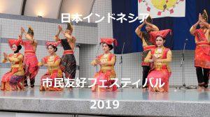 【日本インドネシア市民友好フェスティバル2019】見学してきたました。ナシチャンプル美味し!
